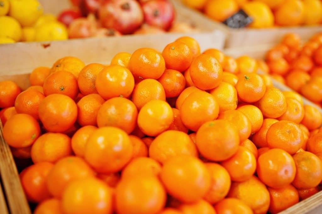 Colorful shiny fresh fruits